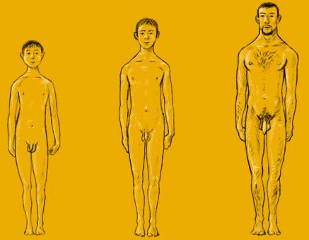 Pubertt bei Jungen: Penisentwicklung u 1 Samenerguss